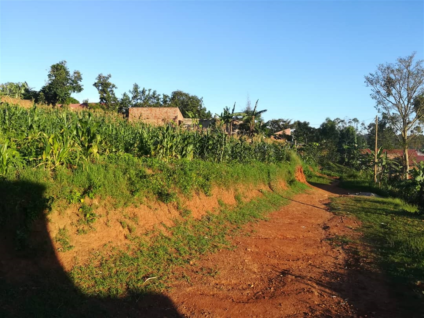 Residential Land for sale in Kilowooza Mukono