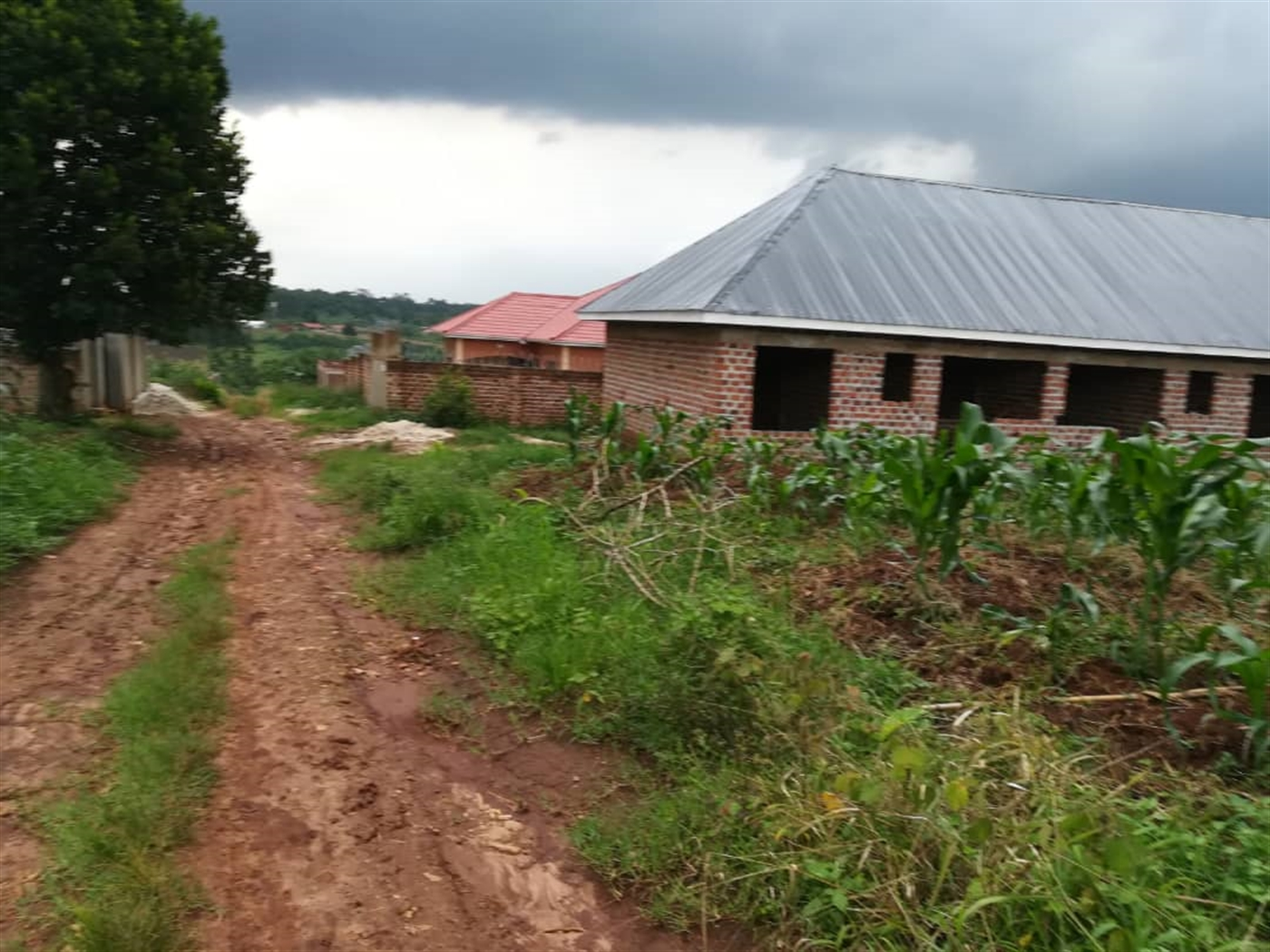 Residential Land for sale in Nabuuti Mukono