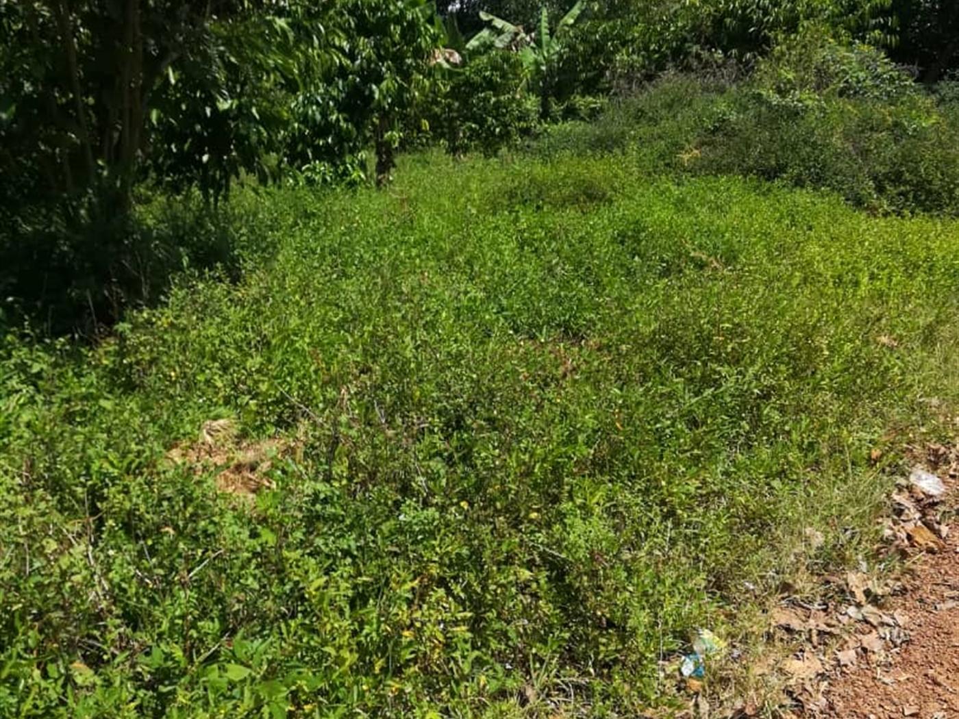 Residential Land for sale in Namawojjolo Mukono