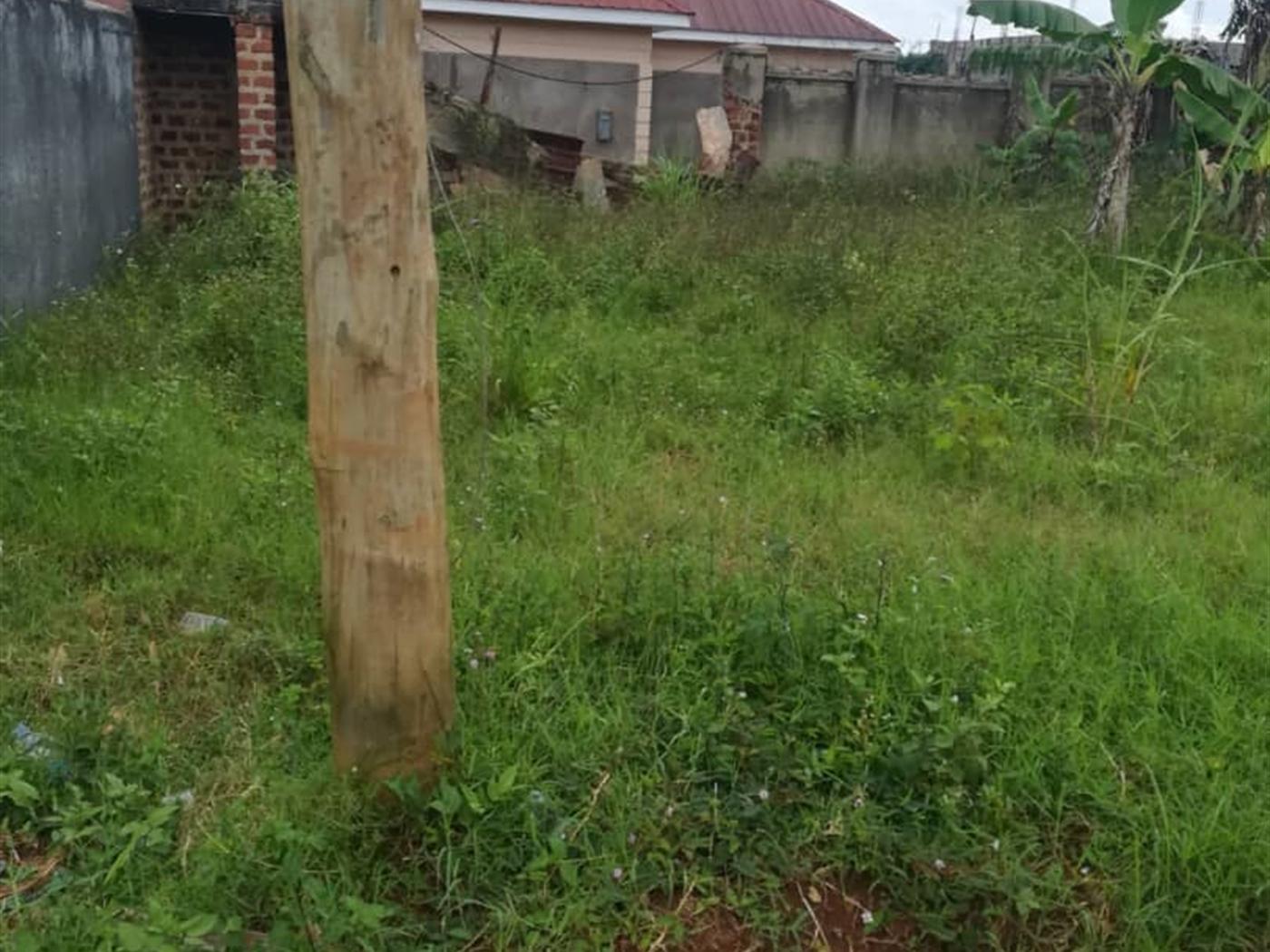 Residential Land for sale in Namataba Mukono