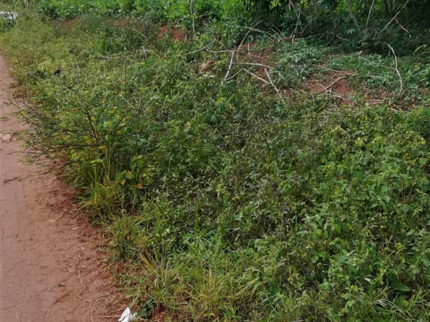 Residential Land for sale in Kusatu Mukono