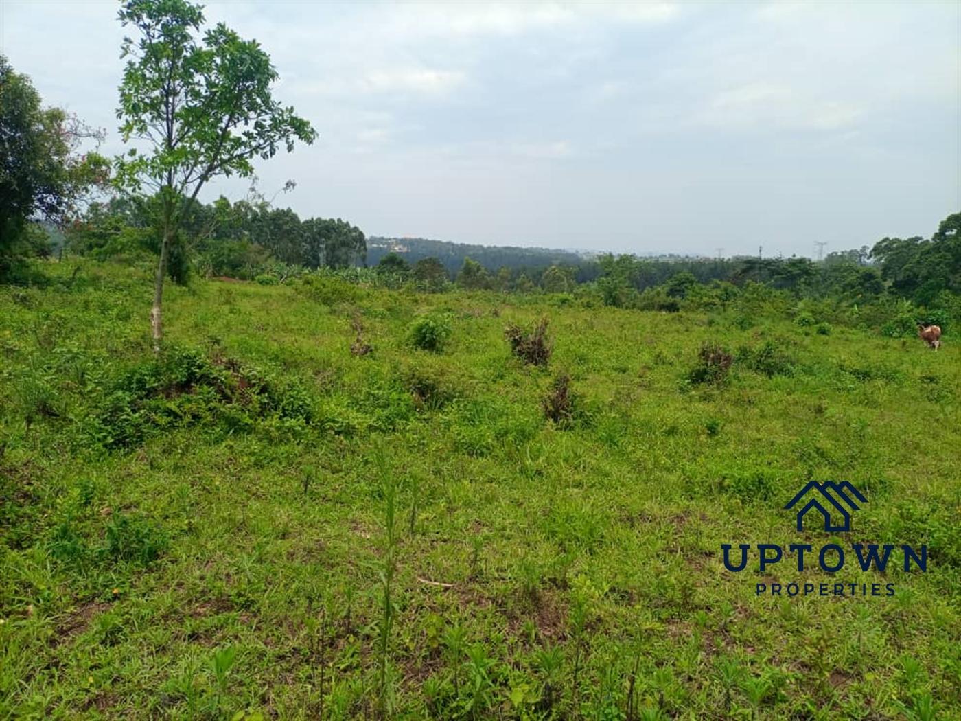 Residential Land for sale in Nkambwe Mukono