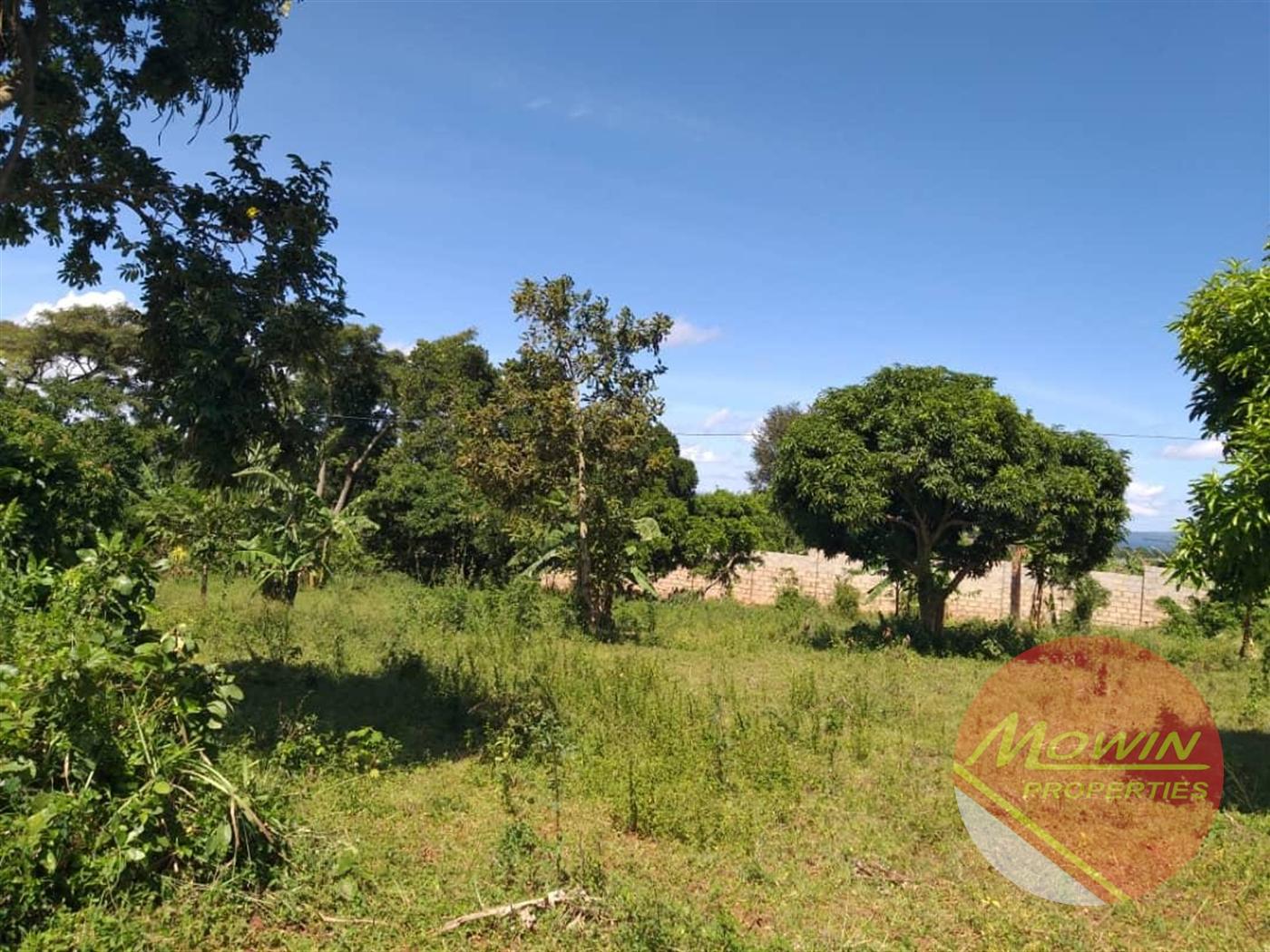 Residential Land for sale in Ziranumbu Wakiso