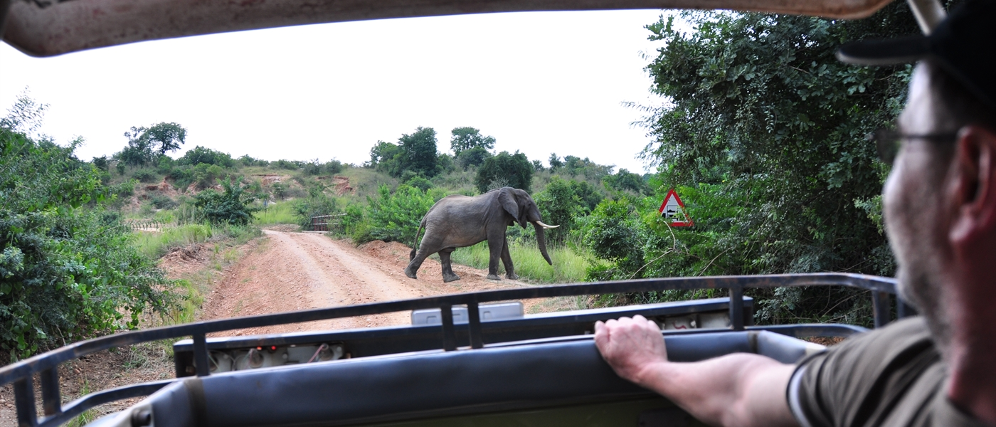 Game Drives in the National park